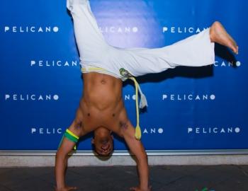 Pelicano-17